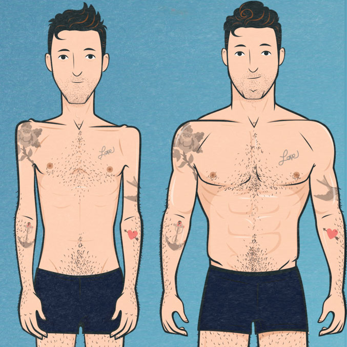 Skinny to Muscular Illustration